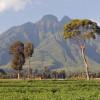 Virunga Mountains, Rwanda