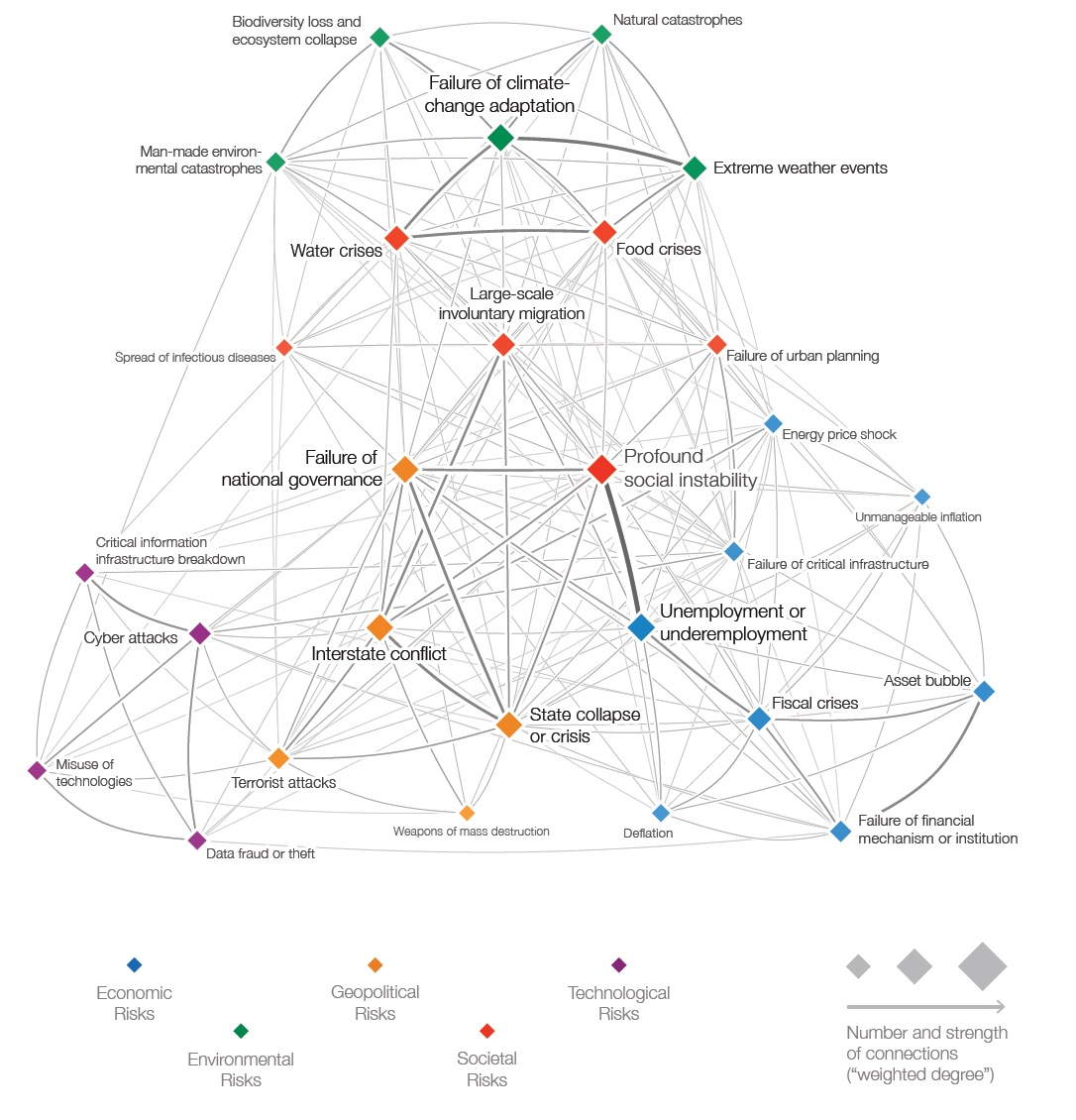 WEF Risks Connections
